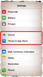 How to change Apple ID on iPhone [A-Z Guide]